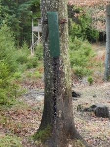 Buchenholzteerautomat BTA + Akku